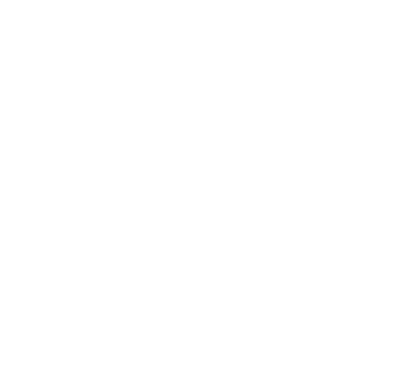 Lyon CMDATA